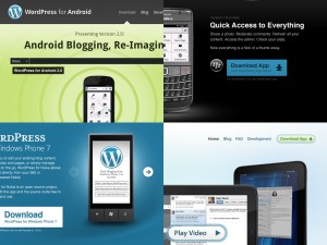 WordPress Mobile Apps Websites - Details